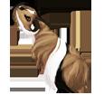 Peruvian Guinea Pig ##STADE## - coat 1340000002
